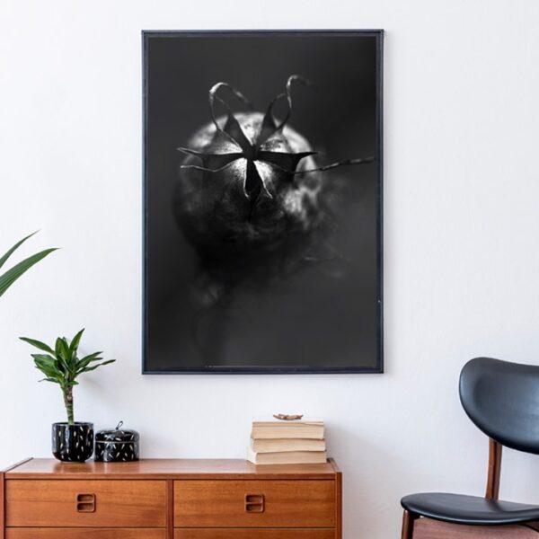 Affiche graphique fleur sauvage piquante, noir et blanc,