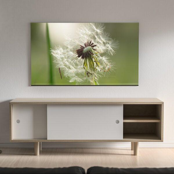 Affiche florale couleur, photo pulsart in astris