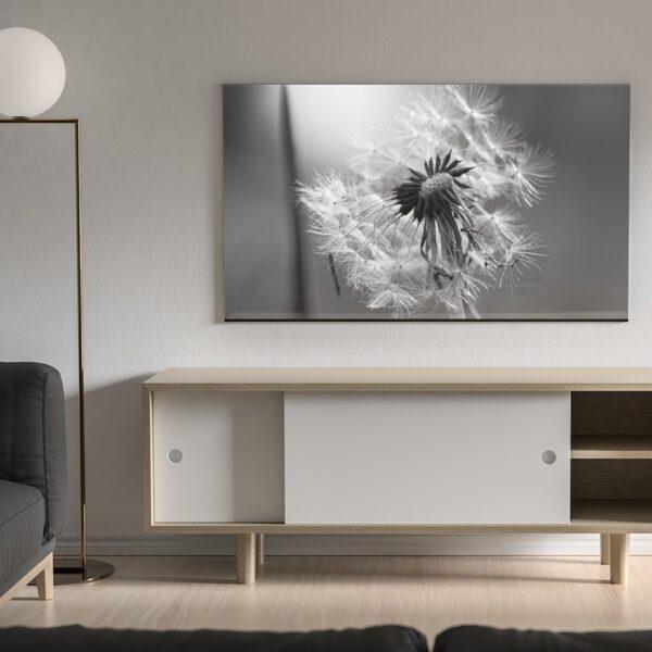 Affiche florale noir et blanc, photo pulsart in astris