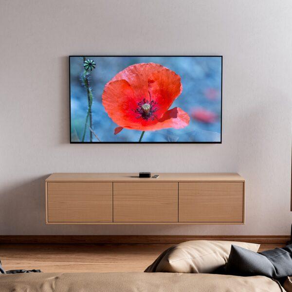 Affiche fleur, coquelicot rouge, déco florale, photographie