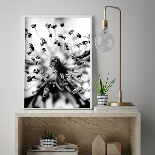 Affiche déco florale, photographie en noir et blanc