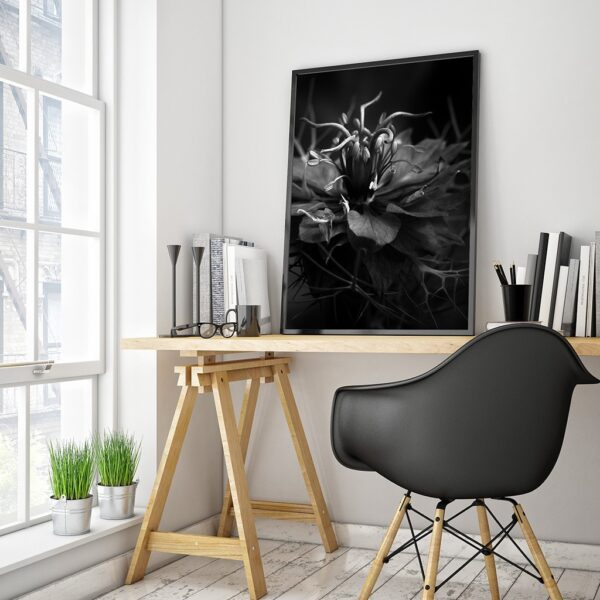 Affiche photo macro fleur en noir et blanc