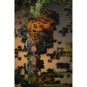Affiche photographie puzzle tigre jungle couleur