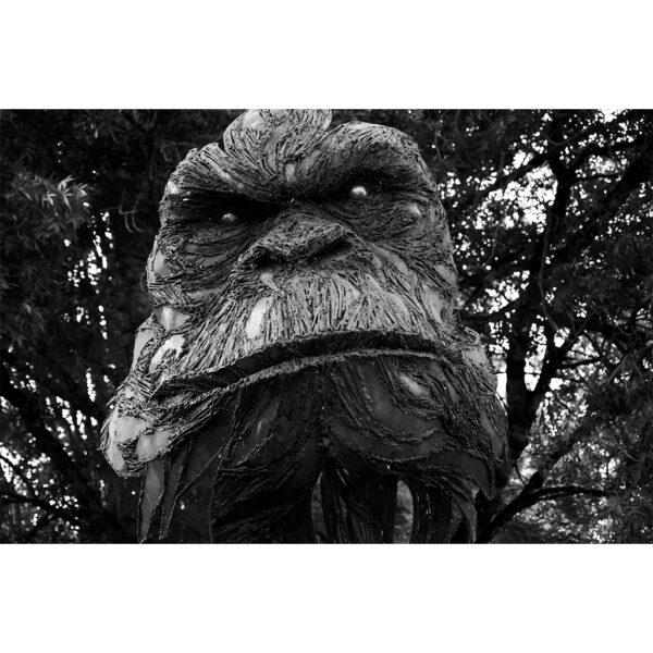 visage chimpanzé sculpté